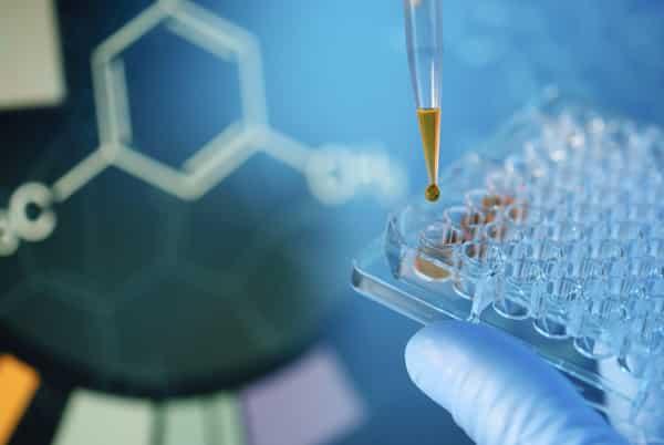 M.Sc. Chemistry Project Associate Post @ IIT Kanpur