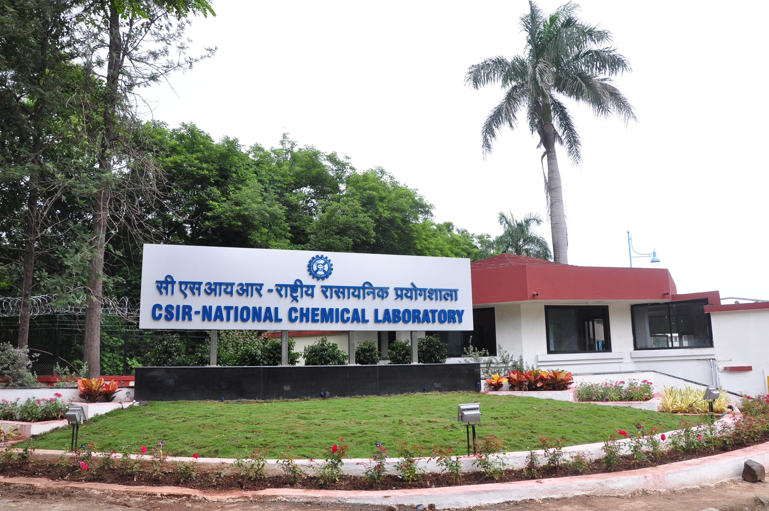 Project Assistance Job Vacancy @ National Chemical Laboratory, Pune
