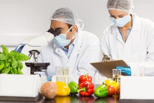 B.Tech & Msc Chemistry Food Safety Post Vacancy @ Cargill