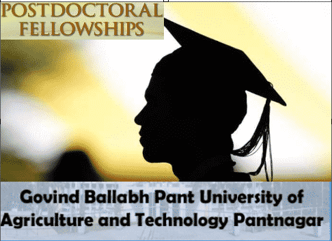 Post Doctoral Fellow @ G.B Pant University of Agriculture & Technology