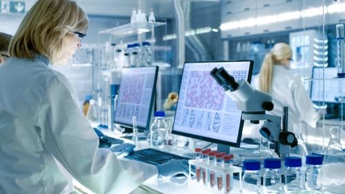 Multiple Job @ CSIR-NEIST | Msc & Phd Chemistry Jobs