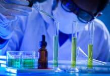 Chemistry Project Fellow Job Vacancy @ Amity University