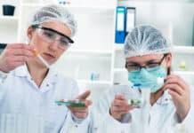 Bsc & Diploma Chemical Engineers Job Vacancy @ Syngene