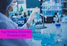 Chemistry Project Fellow Job - Yogi Vemana University