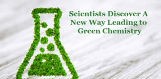 Green Chemistry by New Plant Enzyme