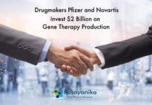 $2 Billion Worth Investment on Gene Therapy Production by Drugmakers