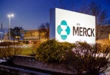 Merck Freshers Recruitment 2020 - MSc Chemistry Candidates Apply