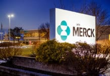 Merck Pharma Job Opening - Business Executive Post