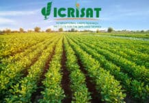 Govt Job ICRISAT Lab Assistant Vacancy - Chemistry Candidates Apply