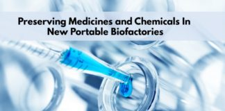 Preserving Chemicals in Portable Biofactories