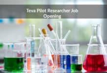 Teva Pilot Researcher Job Opening - MSc Chemistry