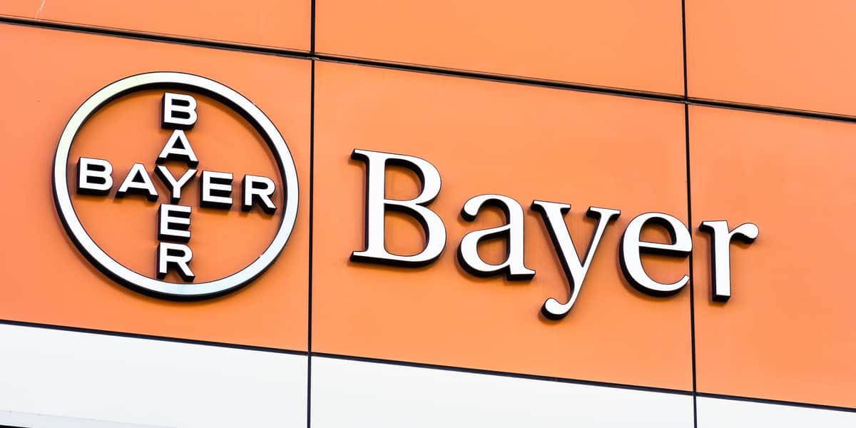 Bayer Job