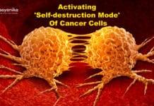 Activating self-destruct mode of cancer