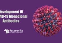 Development of COVID-19 Monoclonal antibodies