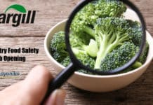 Cargill Chemistry Food Safety Job Opening - Apply Online