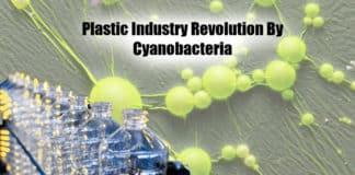 Plastic Industry Revolution