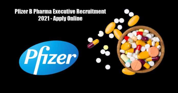 Pfizer B Pharma Executive Recruitment 2021 - Apply Online