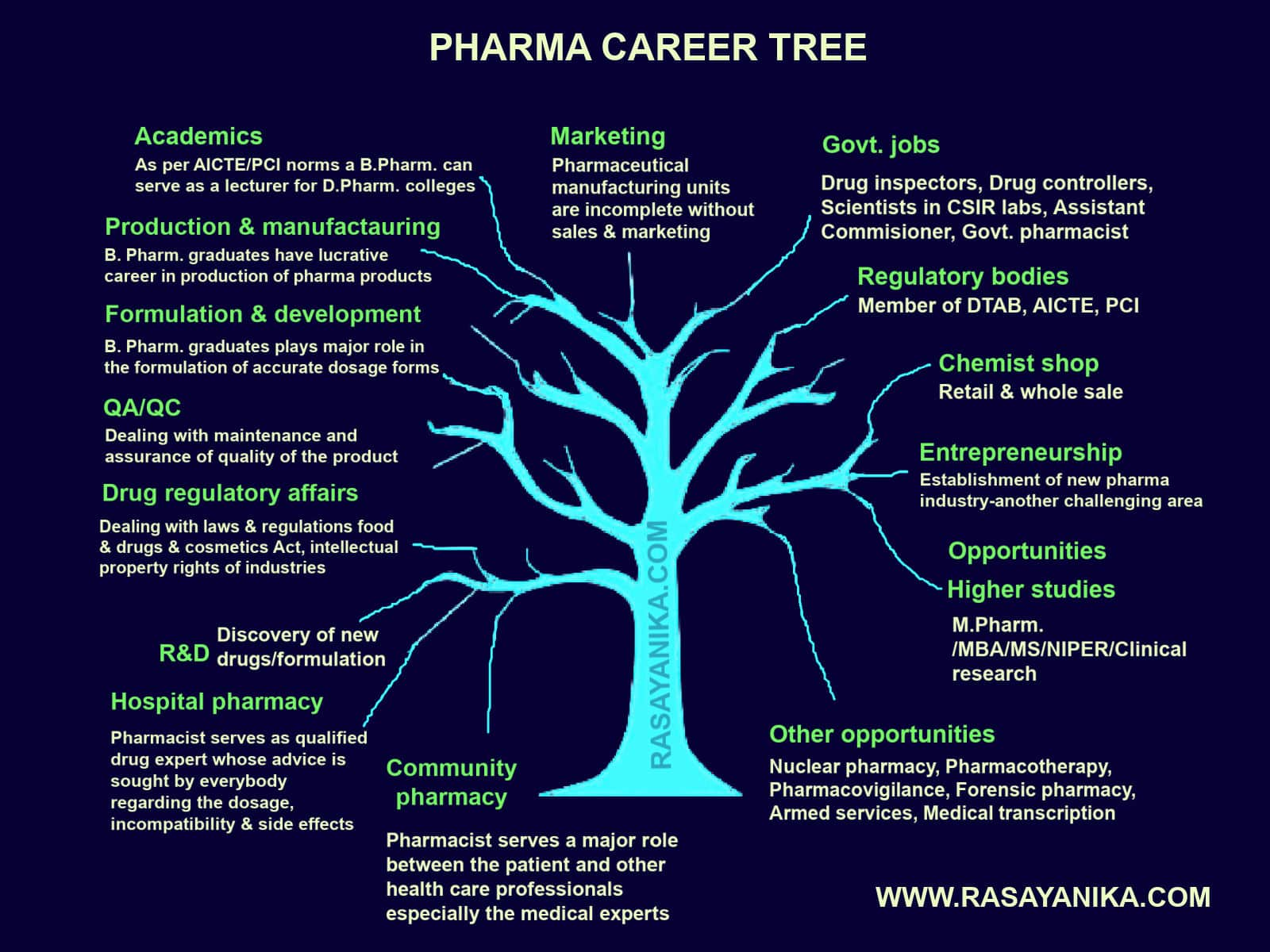 A Career in the Pharmaceutical Industry