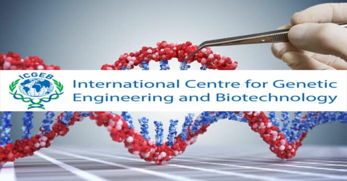 ICGEB Pharma Research Fellow Recruitment - Applications Invited