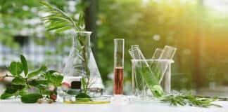 IRD-IITD Hiring - Chemistry Jr Research Fellow Post Vacant