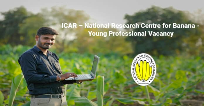 ICAR – National Research Centre for Banana - Young Professional Vacancy